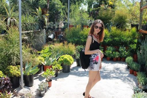 Plants and Fashion