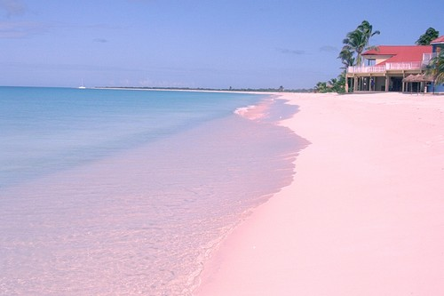 Pink-Beach-of-Barbuda
